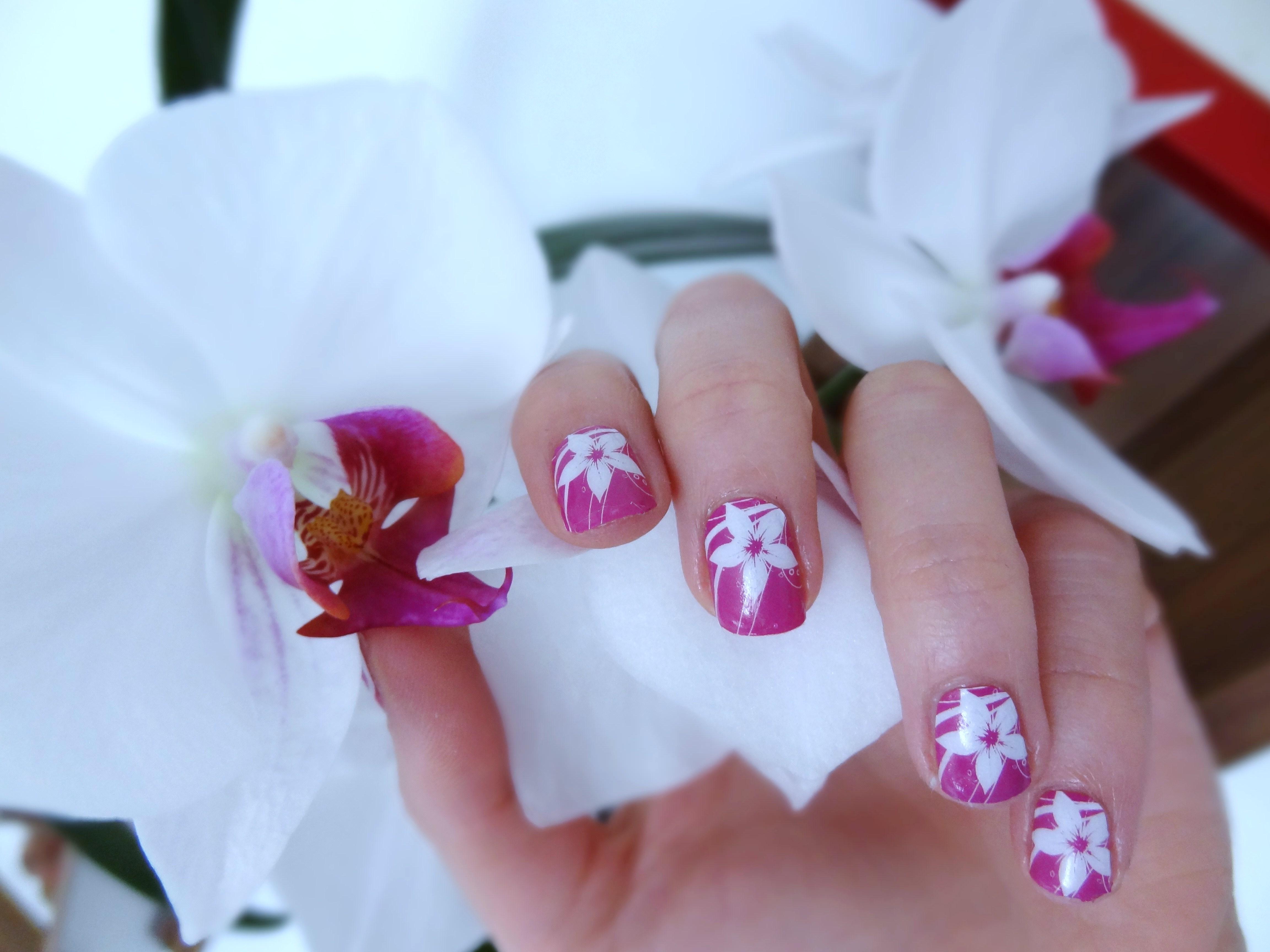 MISSLYN Nail Polish Strips | allerleibloggerei