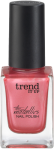 trend_it_up_The_Metallics_Nailpolish_020_Internet_808714