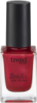 trend_it_up_The_Metallics_Nailpolish_050_Internet_808717